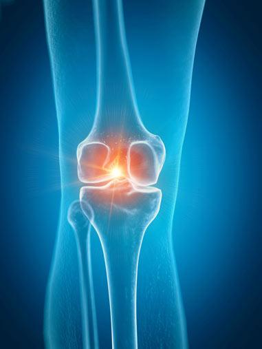 Lipogems-Knee-Joint